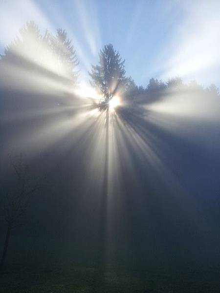 fog-524071_640.jpg