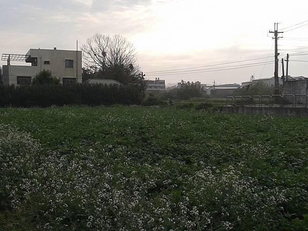 中山建地_4382.jpg