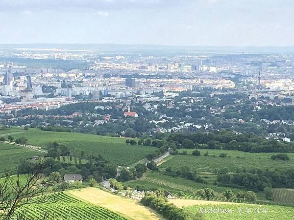 遠眺Vienna