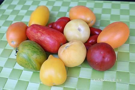 各式番茄.jpg
