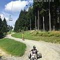 Mountaincart 3.jpg