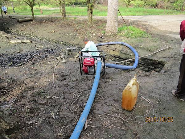在諸羅樹蛙棲地抽水