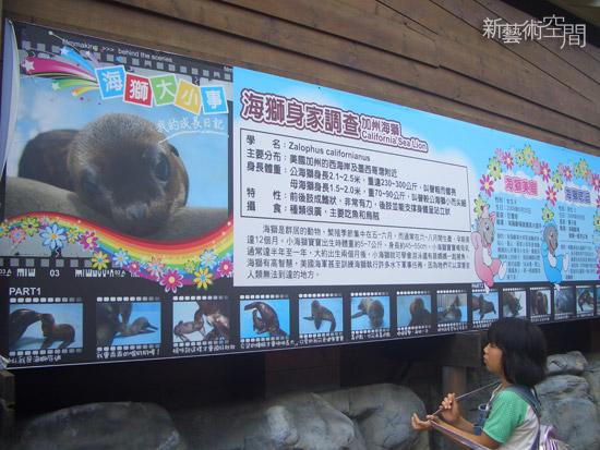 海獅寶寶介紹看板.jpg