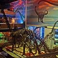 恐龍展示區.jpg