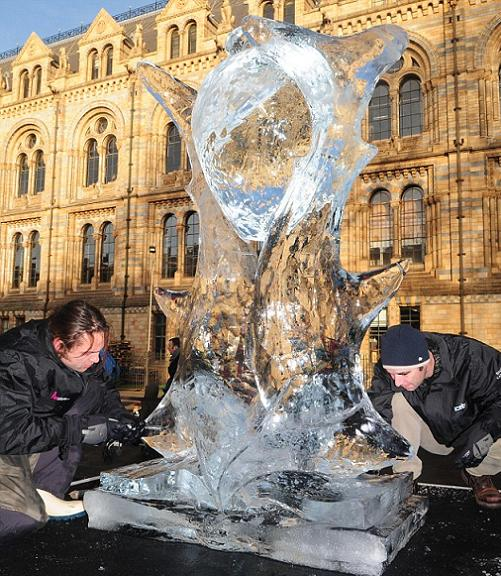 Ice-Sculptures-3.jpg