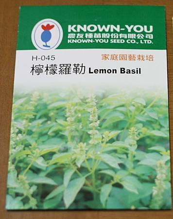 檸檬羅勒種子