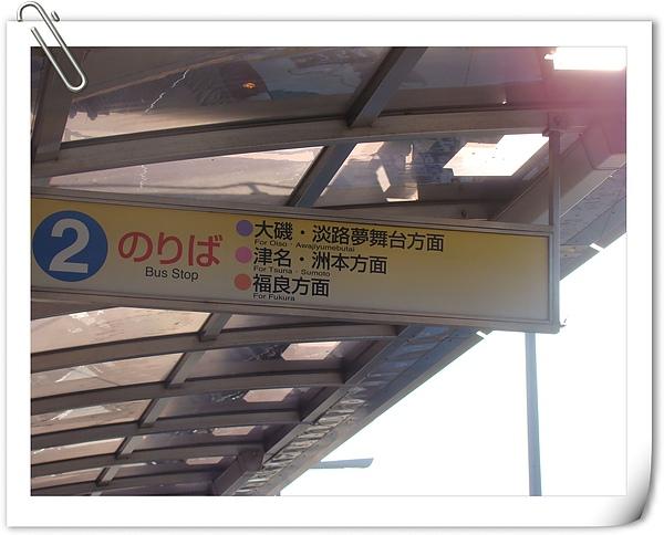 DSC05676-1.jpg