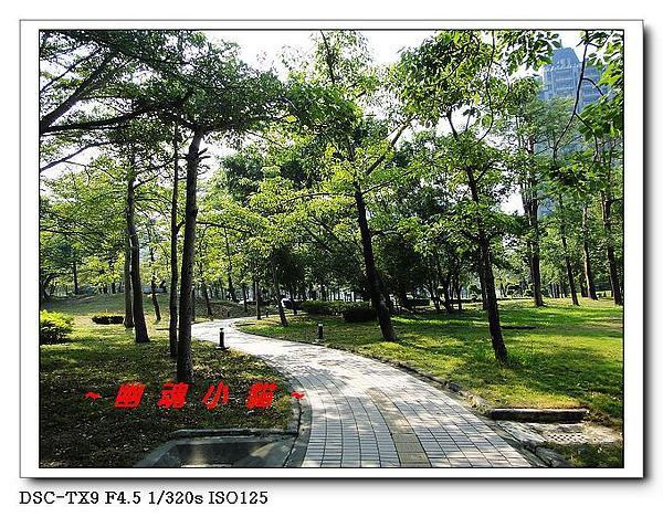 DSC0042858.jpg
