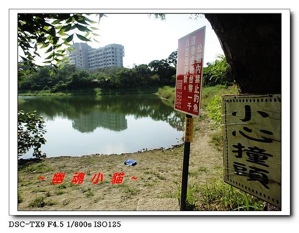 DSC0101212.jpg