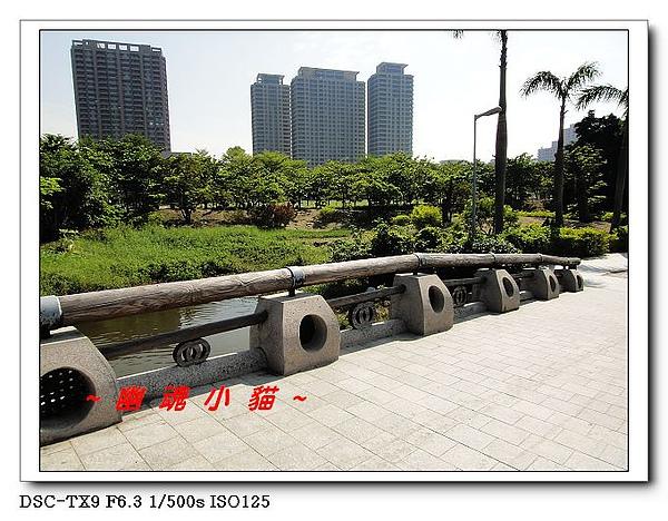 DSC003394.jpg
