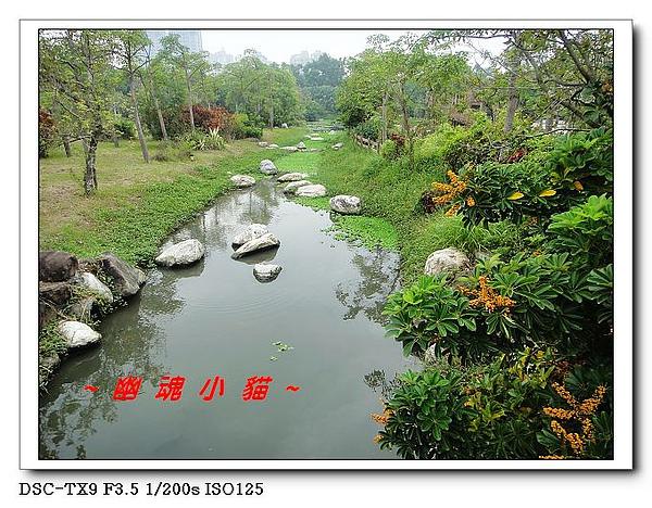 DSC0076470.jpg