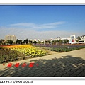 DSC0116429.jpg