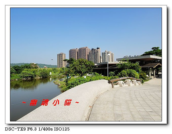 DSC003437.jpg