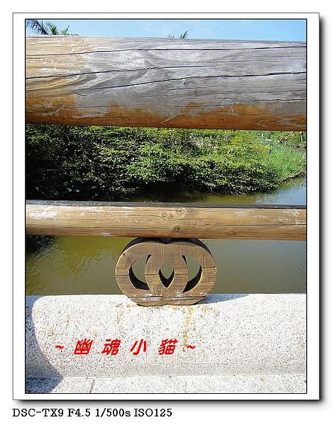 DSC003383.jpg