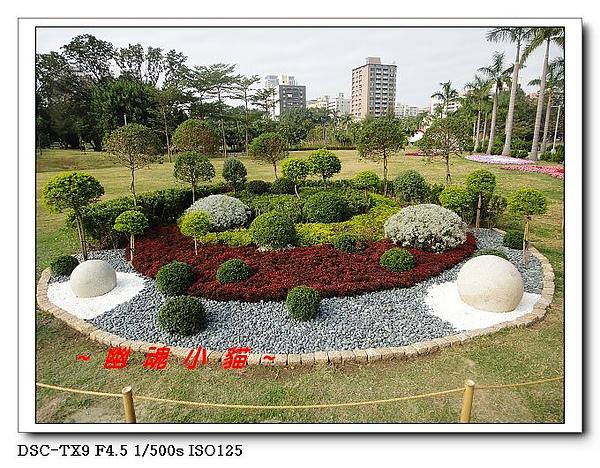 DSC0119624.jpg