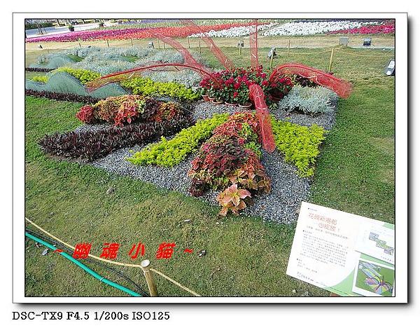 DSC011746.jpg