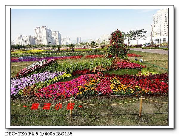 DSC011735.jpg