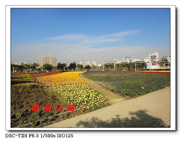 DSC011655.jpg