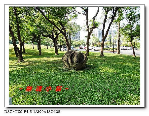 DSC0041950.jpg