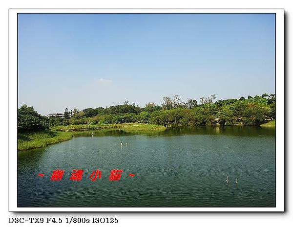 DSC009865.jpg