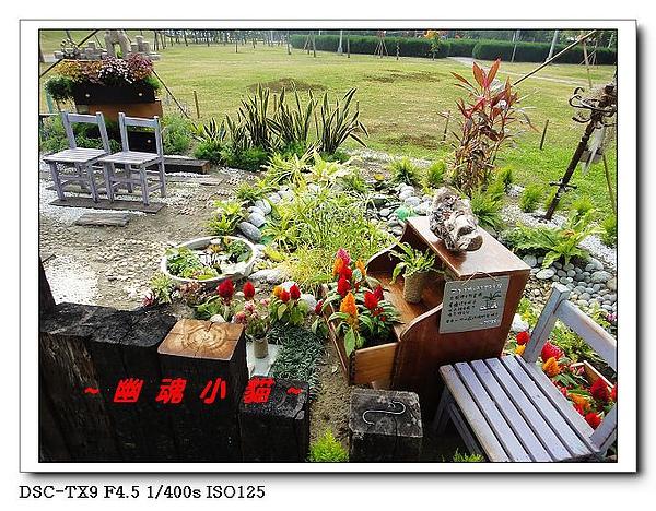 DSC0120128.jpg