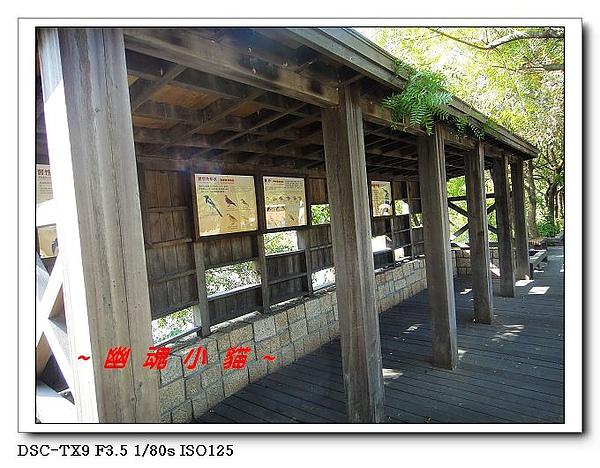 DSC0100211.jpg