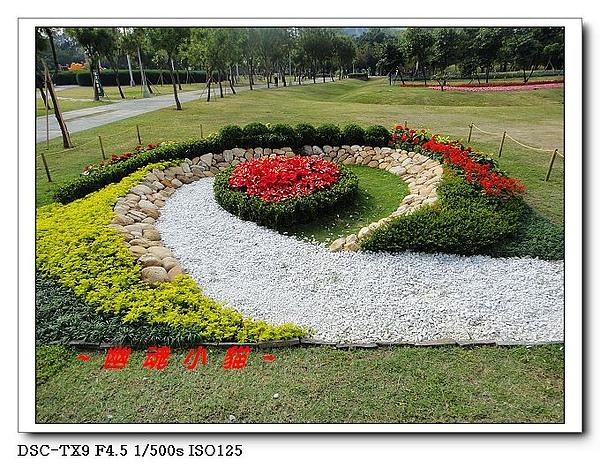 DSC0119422.jpg