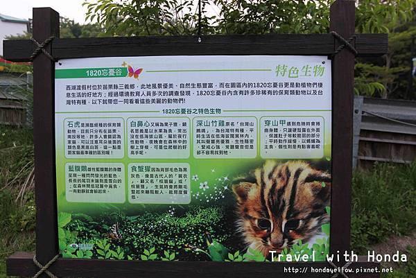 西湖度假村1820忘憂谷保育類動物