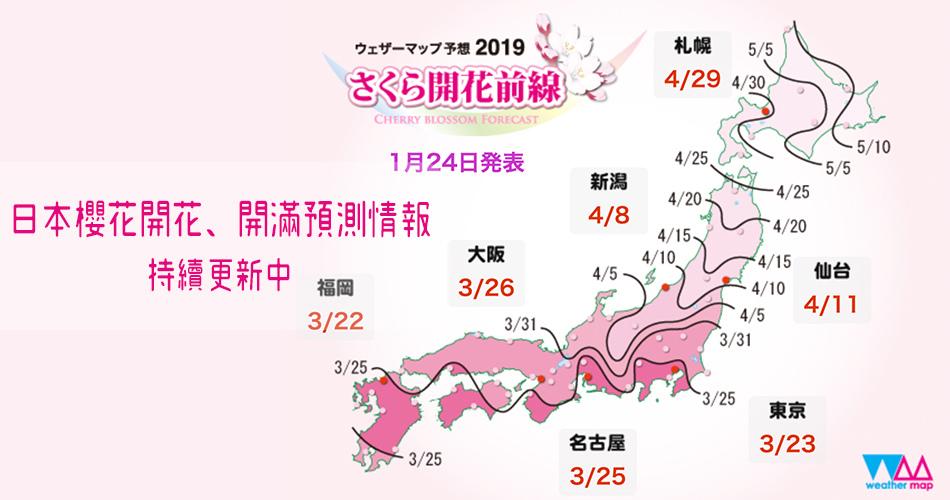 【日本】2019日本櫻花開花、開滿預測情報|持續更新中