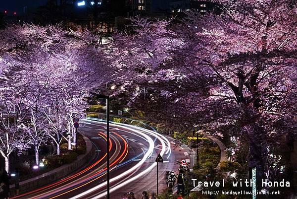 日本-你絕對會愛上的12個東京賞櫻景點-六本木 midtown.jpg