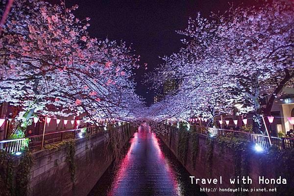 日本-你絕對會愛上的12個東京賞櫻景點-中目黑目黑川櫻花.jpg
