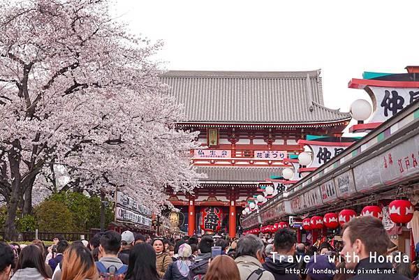 日本-你絕對會愛上的12個東京賞櫻景點-淺草寺.jpg
