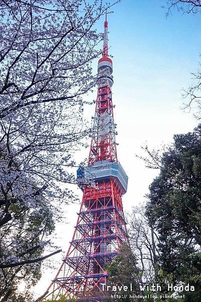 日本-你絕對會愛上的12個東京賞櫻景點-東京鐵塔-芝公園.jpg