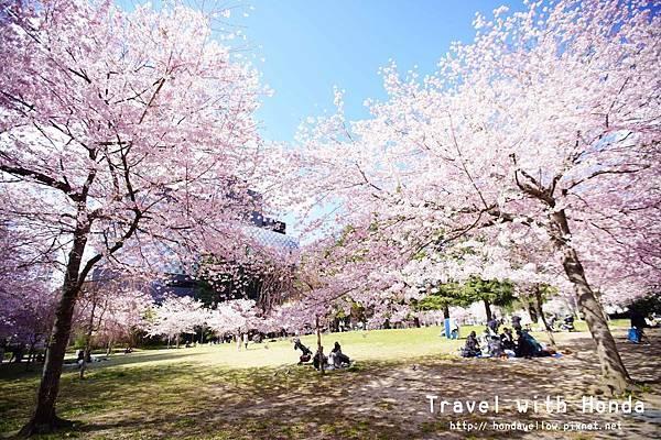 【日本】你絕對會愛上的4個東北賞櫻推薦景點!