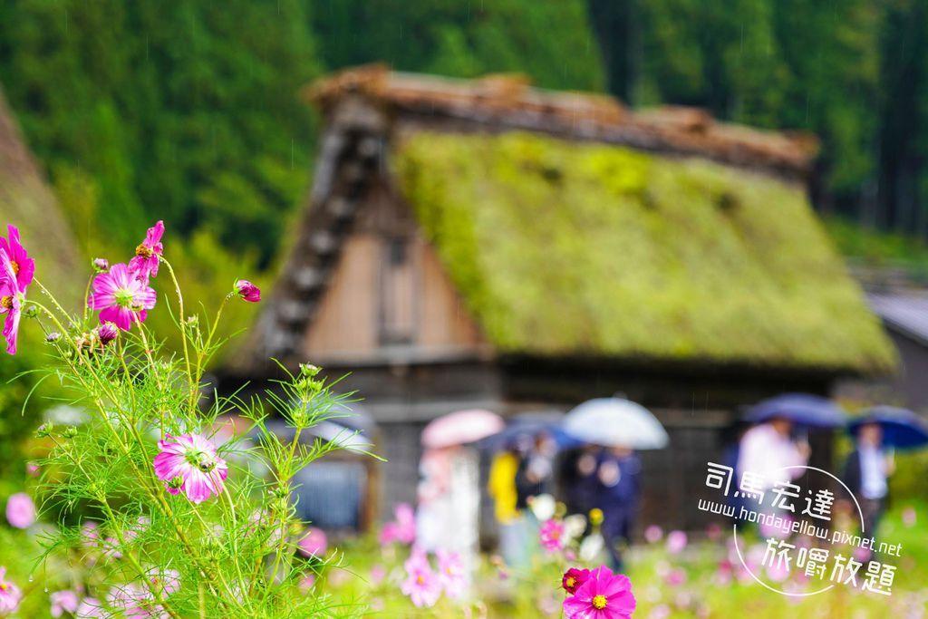 合掌村秋天也很美-展望台-三小屋-神田家-必去-高山出發一日來回-13.jpg