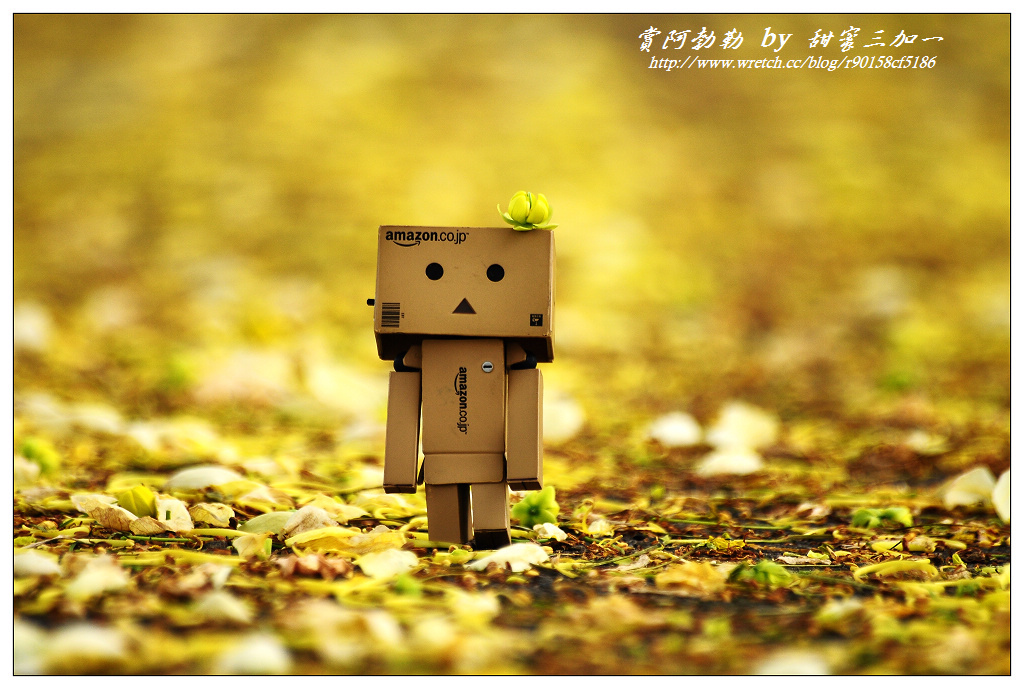 nEO_IMG_DSC_1652