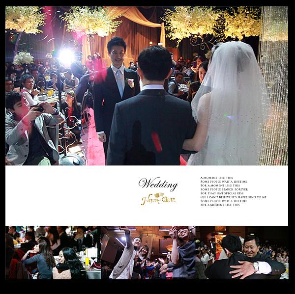 哈妮熊幸福工坊主題婚禮-D&G書店婚禮