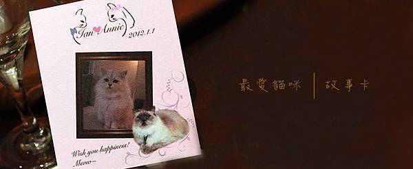 <故事卡>最愛貓咪小品