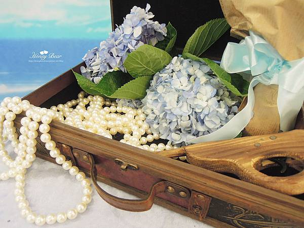 相片桌上盡是珠寶財富 -- J&D航海情緣