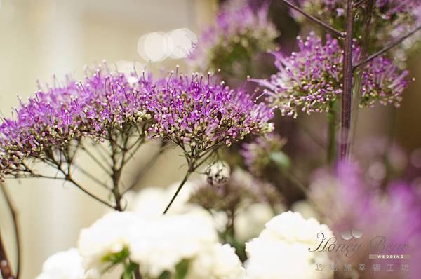 哈妮熊幸福工坊白綠紫色歐式花園-0992.jpg