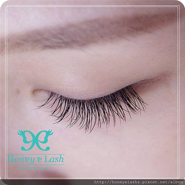 honey e lash (12)