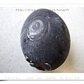Owakudani-black egg