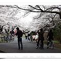 2008 03 29 Hikarigaoka park