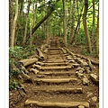 累死人的樓梯部份,接近山頂時會遇到。