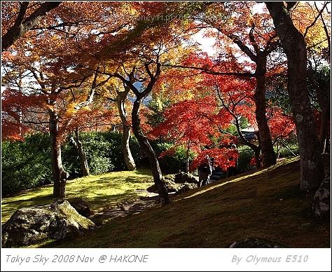 箱根美術館 四季庭園