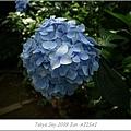 E510_20090619_073.jpg