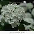 E510_20090619_081.jpg