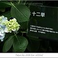 E510_20090619_091.jpg