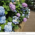 E510_20090619_115.jpg