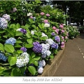E510_20090619_116.jpg